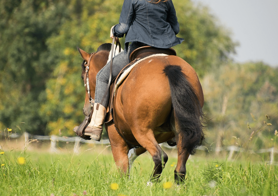 horse-riding-while-pregnant-saddle