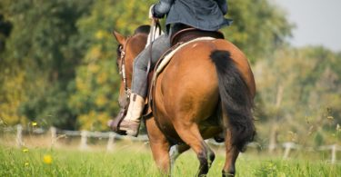 horseback riding what to wear