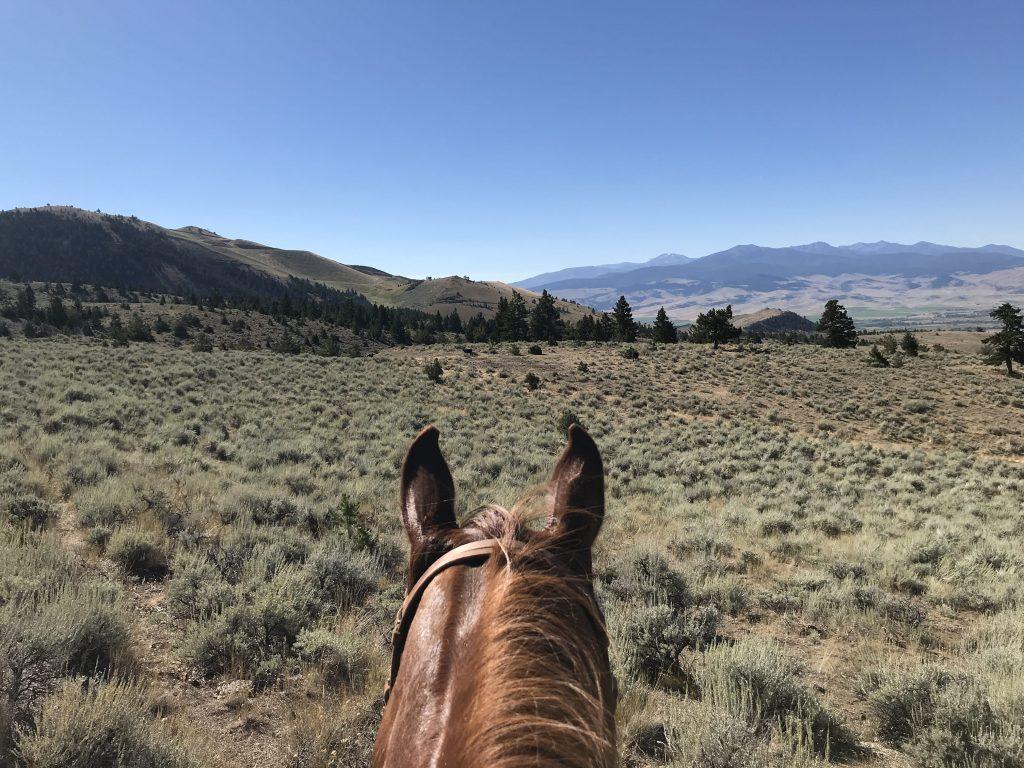 what-wear-horseback-riding-montana