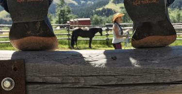 beginner-horseback-riding-boots-feature