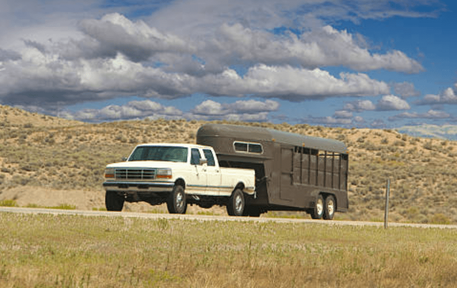 horse-trailer-weight-roadside