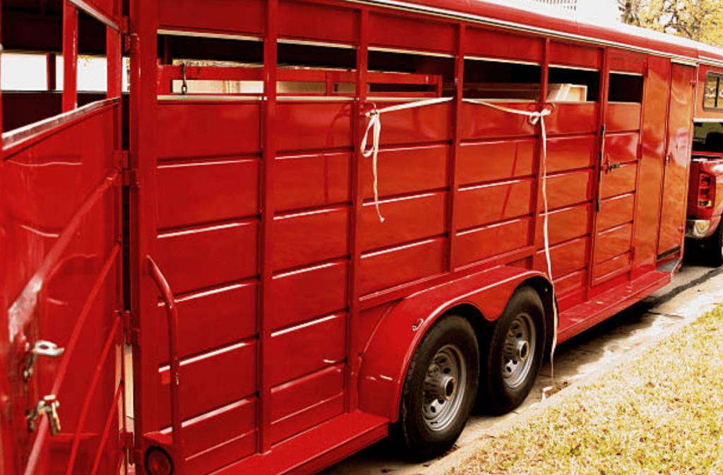 horse-trailer-weight-stock