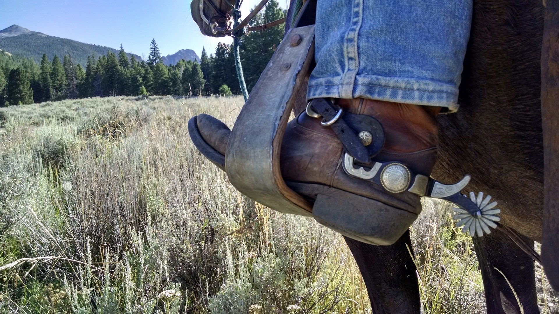 9 Best Boots For Western Horseback Riding