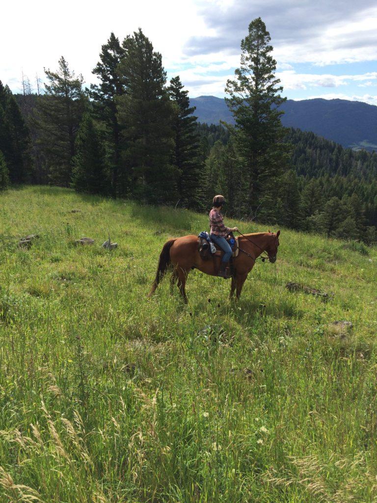 trail-riding-wear