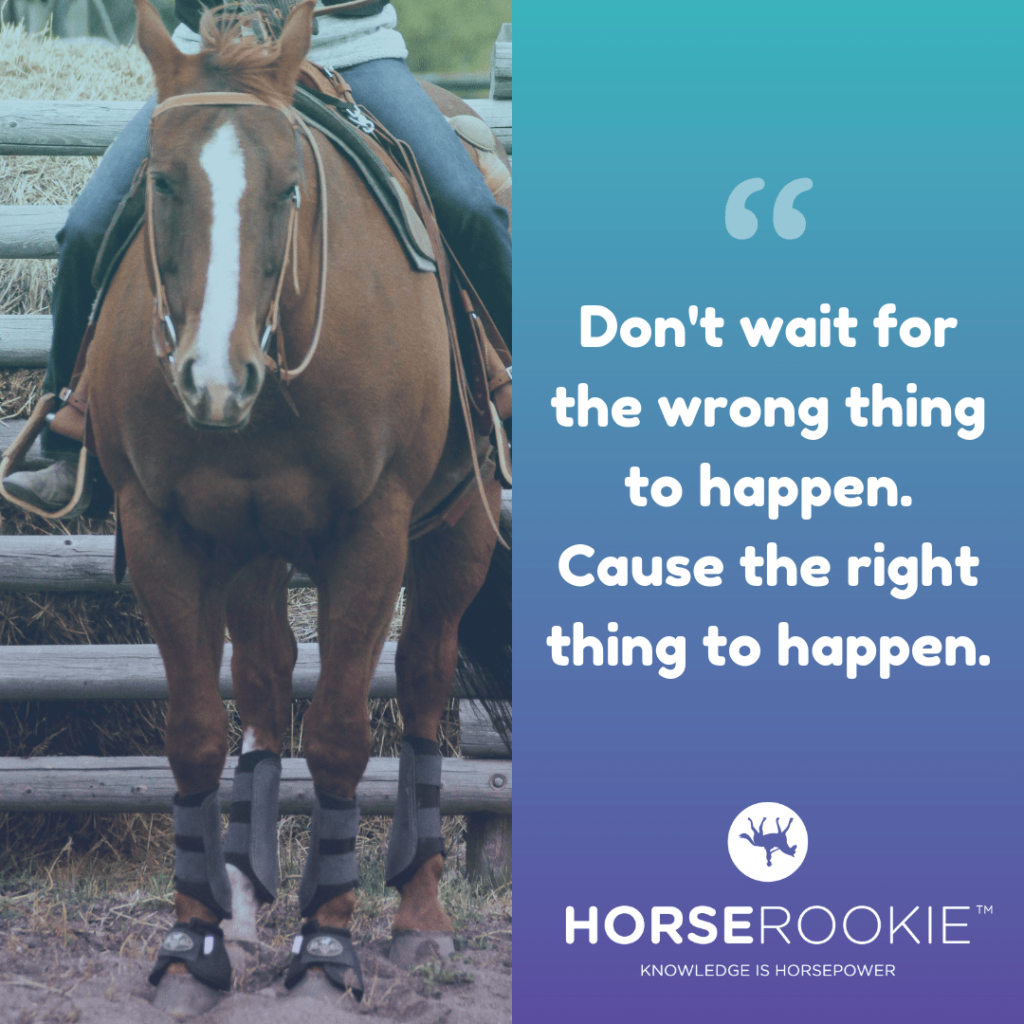 Inspirational Horse Riding Quote