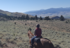 what-wear-horseback-trail-riding