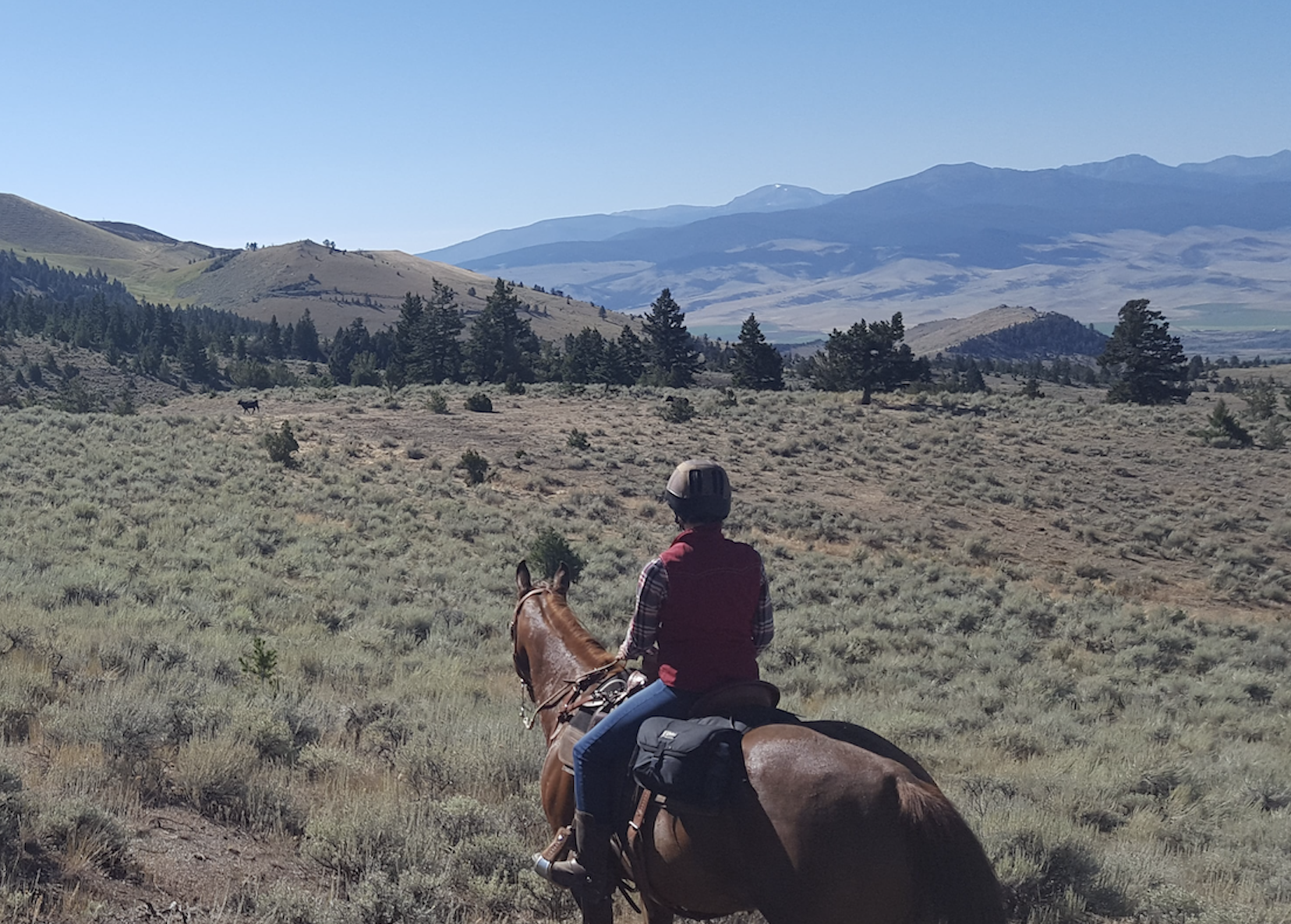 Happy Trails Gear Guide What To Wear Horseback Trail Riding