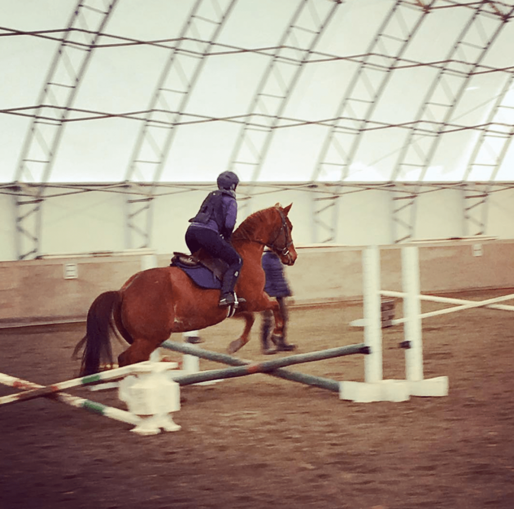 best-equestrian-air-vest