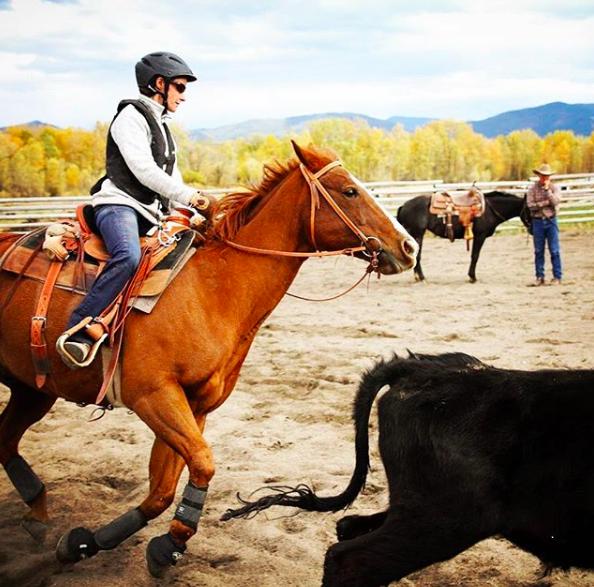 horse-riding-coach