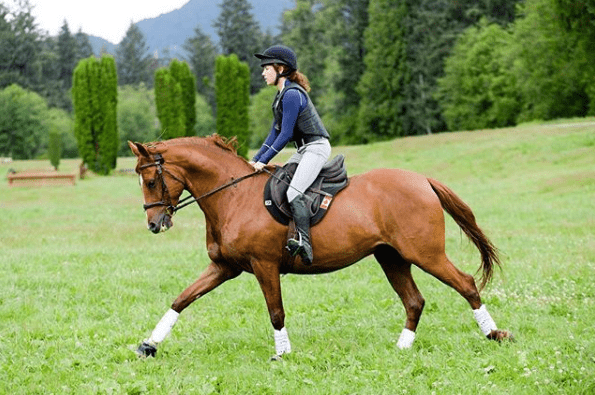equestrian-vloggers