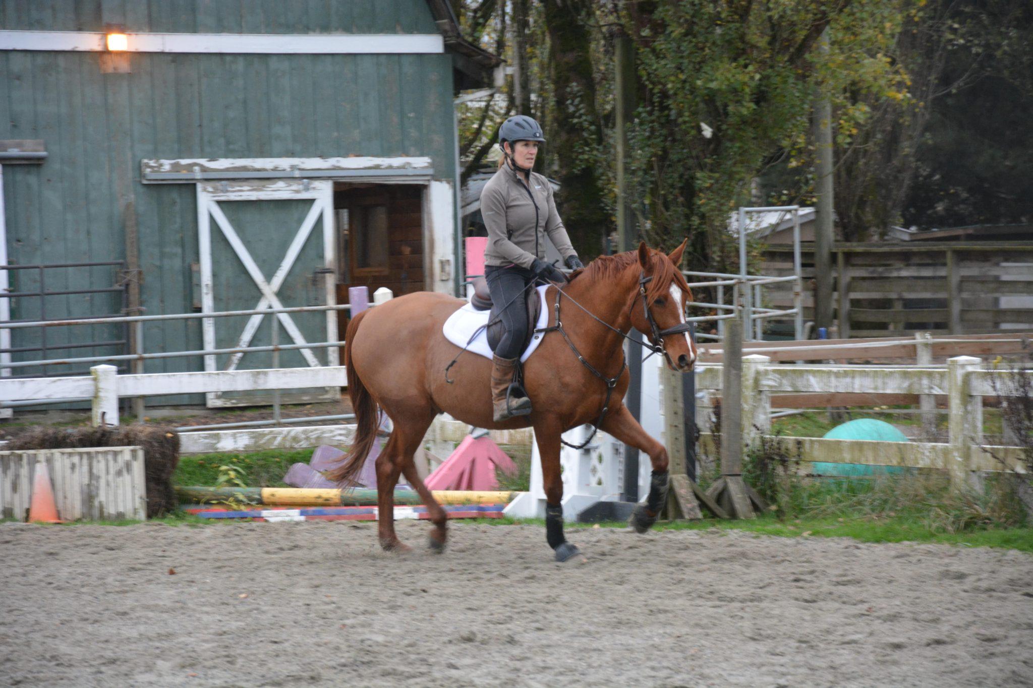 older-adult-horseback-riding