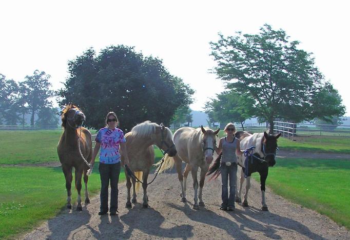 equestrian-team-spirit
