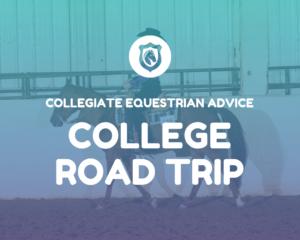 College-Equestrian-Advice
