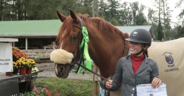 bitless-riding-beginners