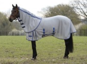 best-fly-sheet-horses-hot-weather