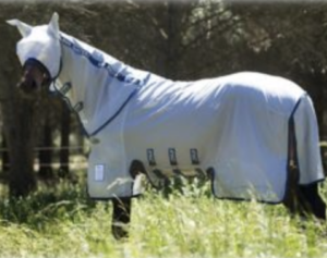 Shoo Fly, Won't Bother Me: 14 Best Horse Fly Sheets