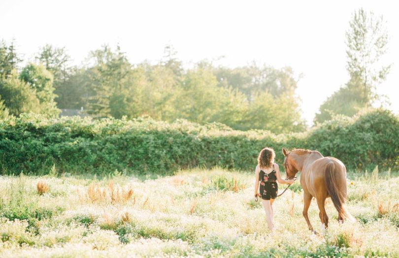 equestrian-advice-shelby-dennis