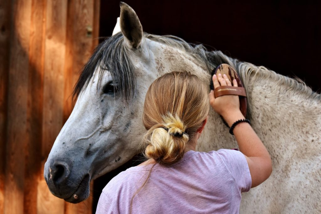horse-riding-equipment-list