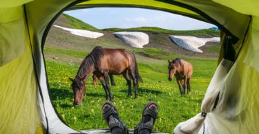 horse-camping-guide