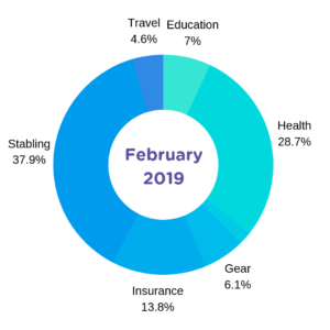 February 2019 Expense Report Chart