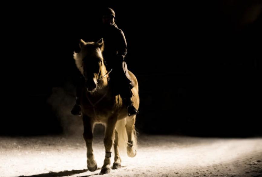 trail-riding-horse-night