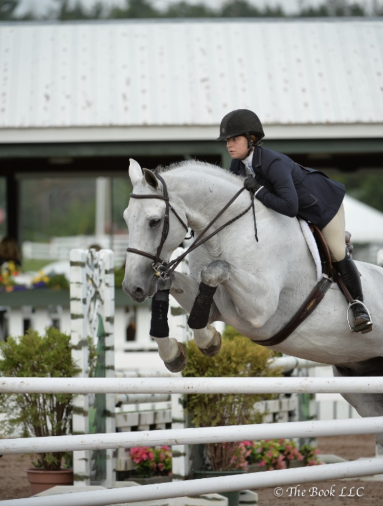 working-student-equestrian-3