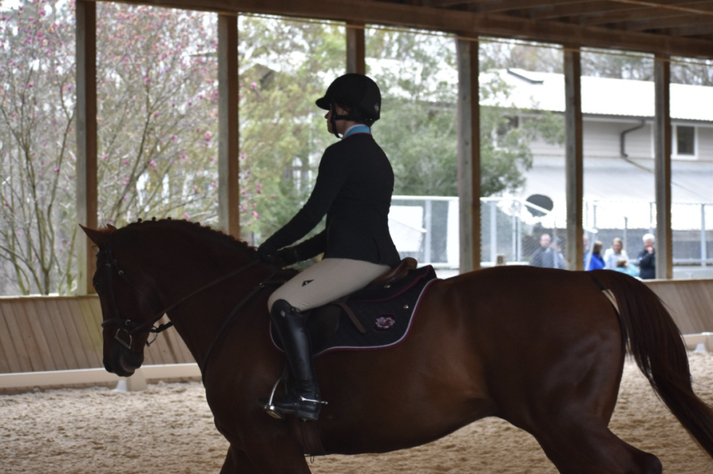 working-student-equestrian-gabrielle
