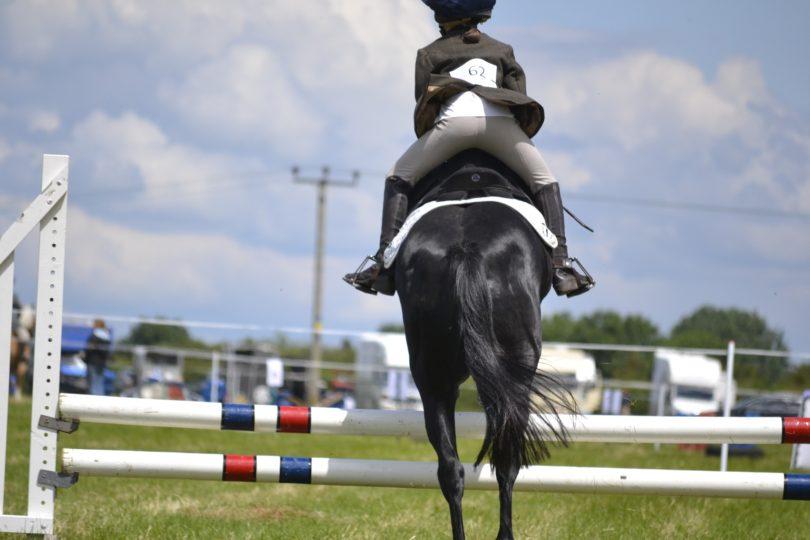 how-safety-stirrups-work-horse