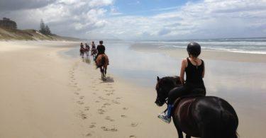 horse-riding-helmet-hot-weather