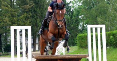 what-wear-summer-horseback-riding