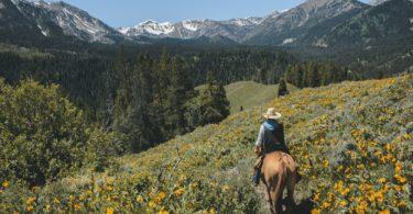 best-satellite-phone-horse-riders
