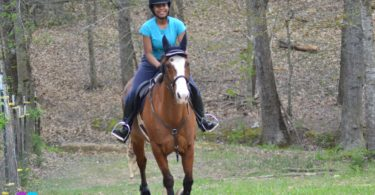 horse riding for beginners