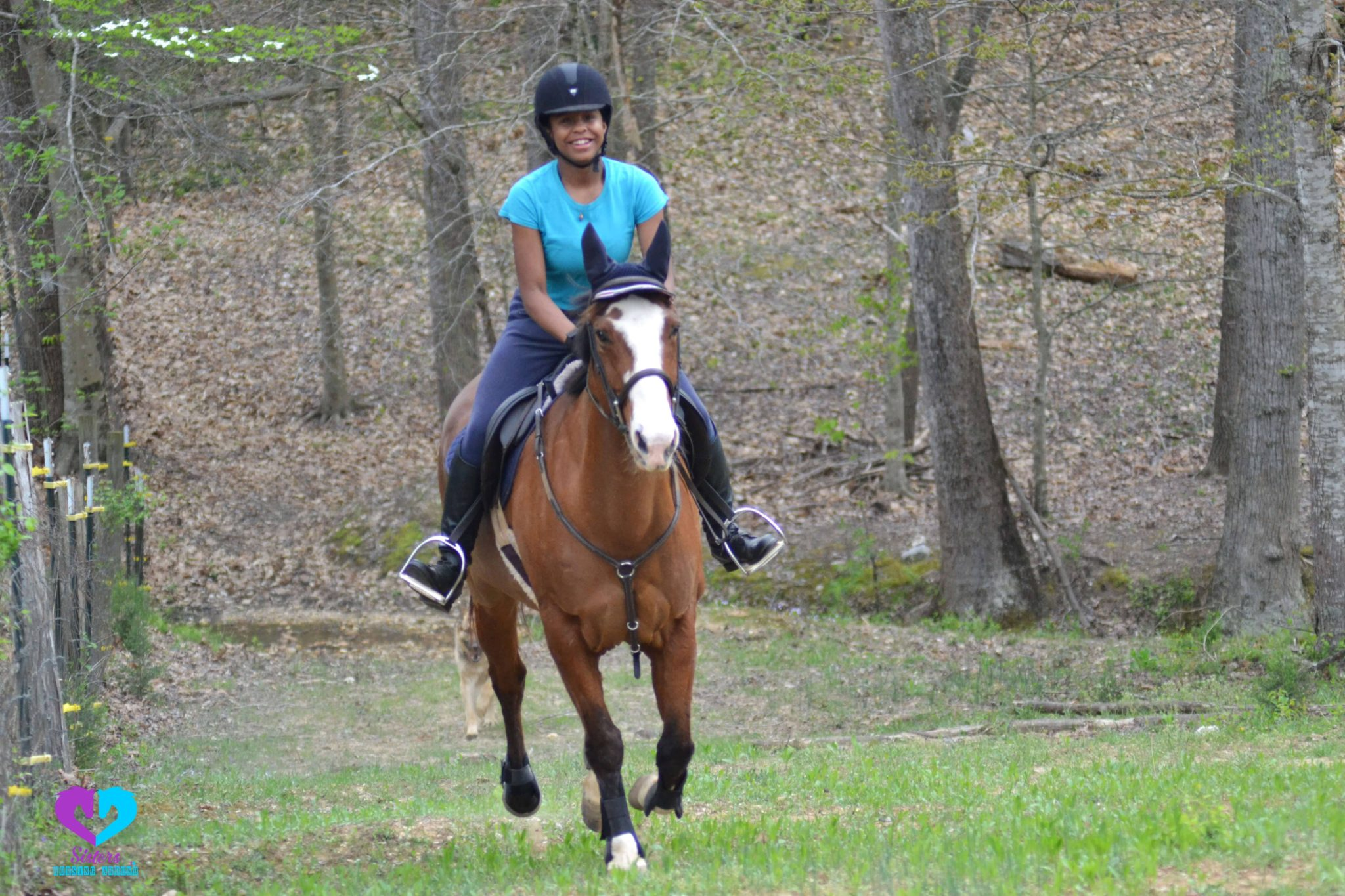 How To Ride A Horse For Beginners Basics Safety Mistakes