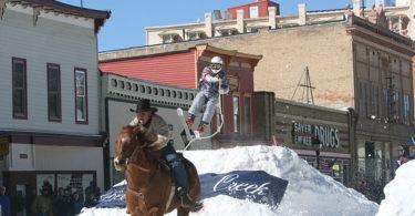 horse-skijoring-equipment