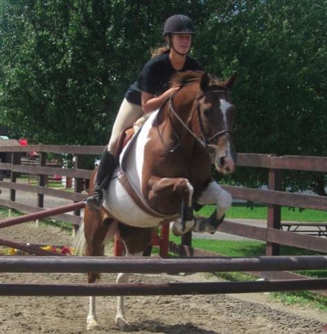 beginner-jumping-tips-schoolmaster