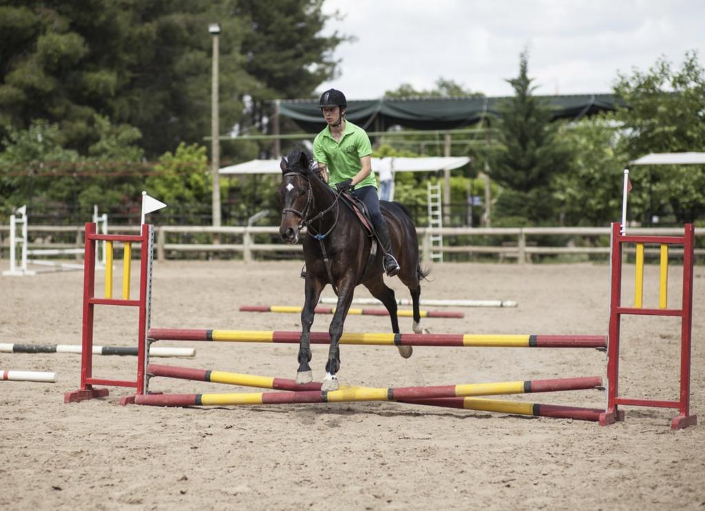 horse-rider-lesson-cost