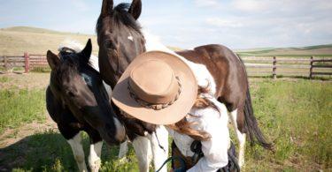 best-montana-horseback-riding-vacation