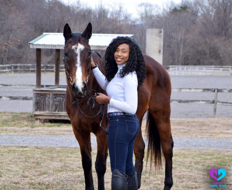 best beginner horse breeds