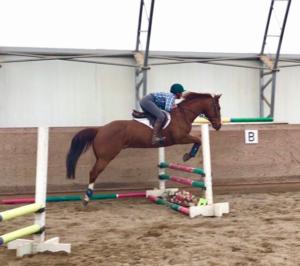 jump-training-ride