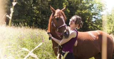 gear-ride-horses-adult