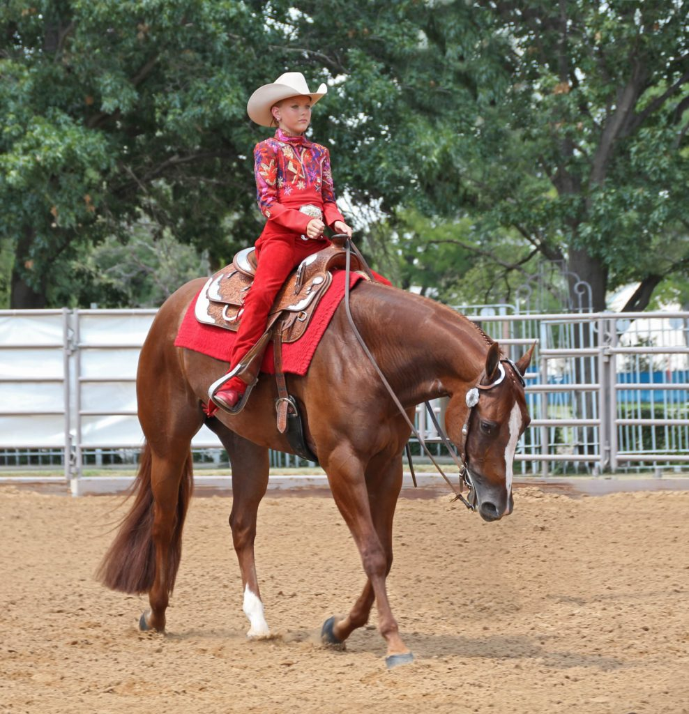 what-is-western-horsemanship-min