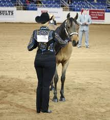 what-is-western-showmanship-min