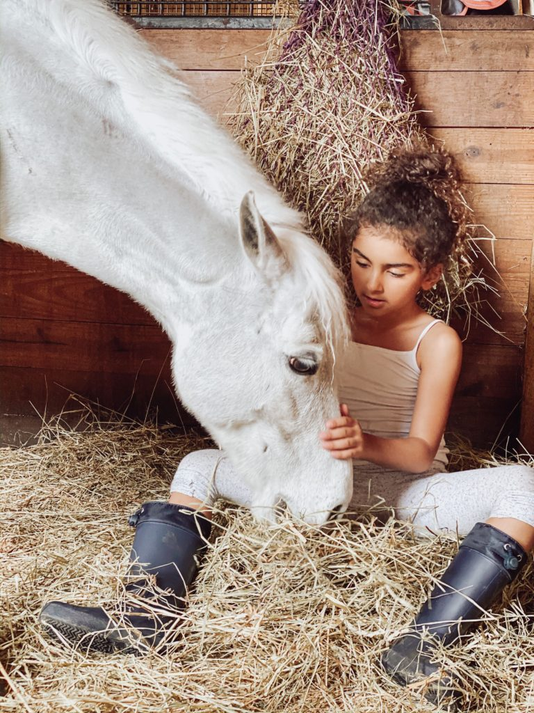 child sitting with horse