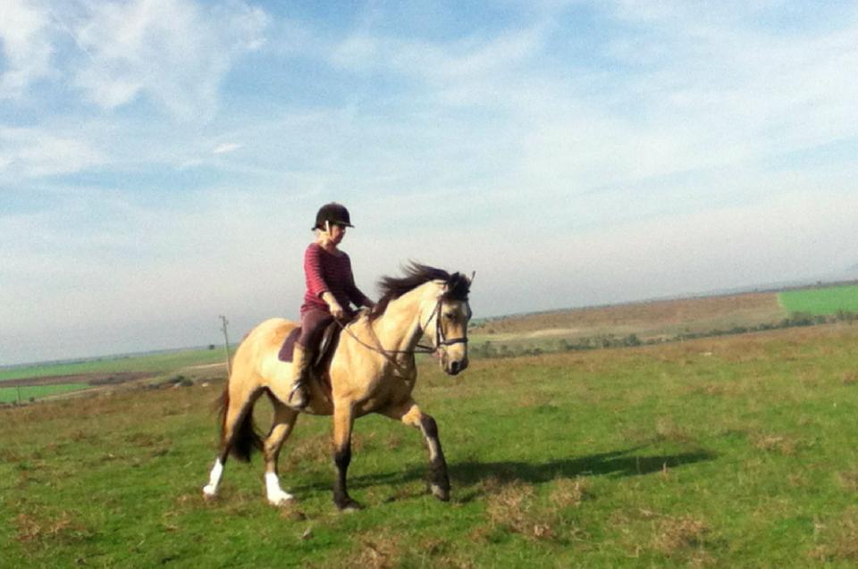 horse-riding-confidence