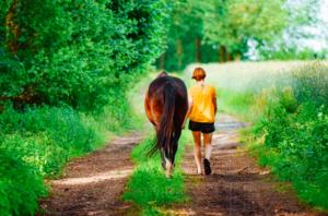 horse-walk