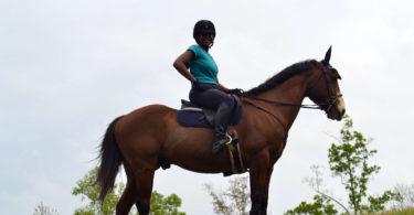 horse riding confidence