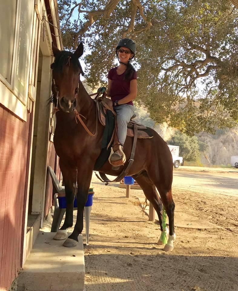 trick riding horse