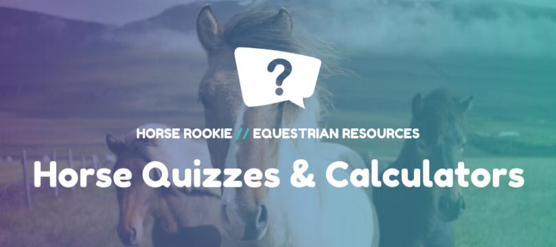 Horse Quizzes and Horse Calculators