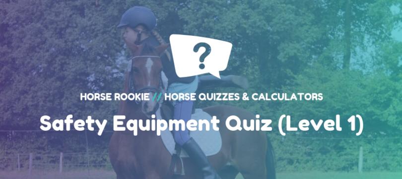 Horse Riding Safety Equipment Quiz