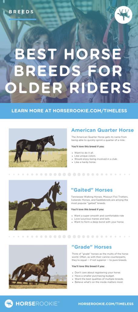 Best horse breeds for older riders